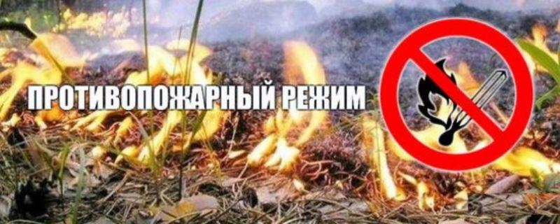 Противопожарный режим в липецкой области в 2016